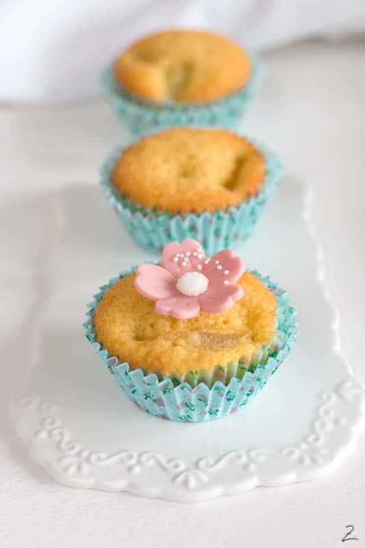 Rhabarber Muffins in einer Reihe