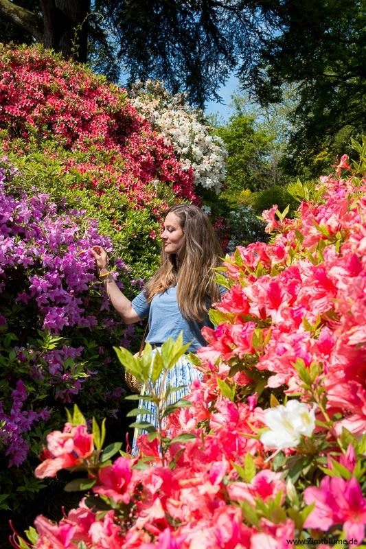 Garten Villa Carlotta