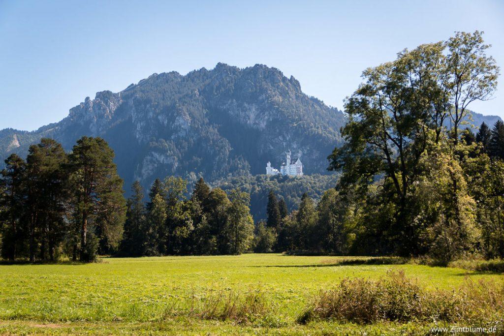 Blick auf Schloss Neuschwanstein beim Alpsee Rundweg