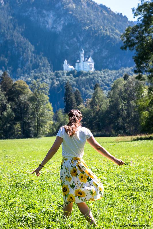 Wiese mit Blick auf Schloss Neuschwanstein
