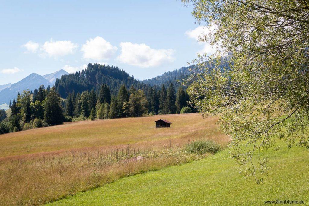 Natur Breitachklamm in Oberstdorf