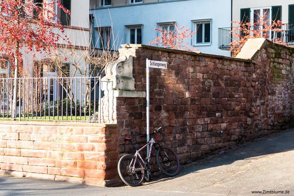 Aufstieg Schlangenweg Heidelberg