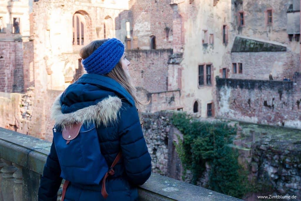 Zimtblume auf Schloss Heidelberg