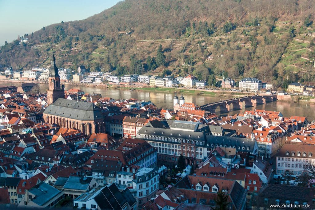 Panoramablick Stadt Heidelberg