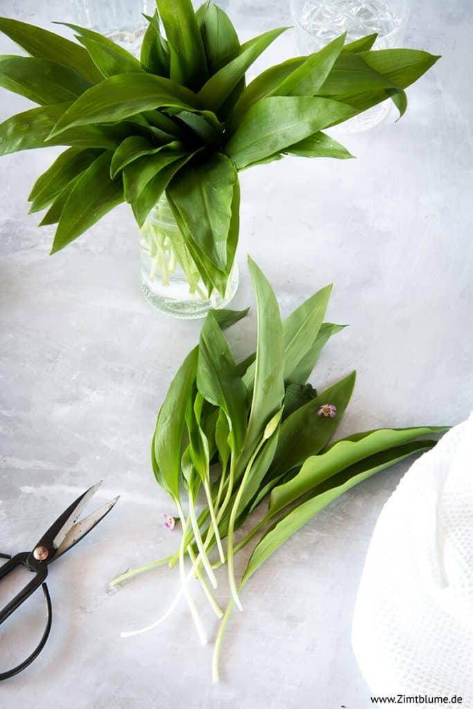 Frischer Bärlauch für Pesto